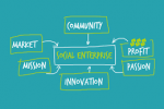 Types Of Social Entrepreneurs